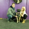 Our wonderful Mastiff Mac with Tara and Kevin